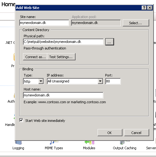 How to create a website in IIS Manager - create as many as